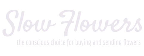 Pollinate Flowers is a member of Slow Flowers
