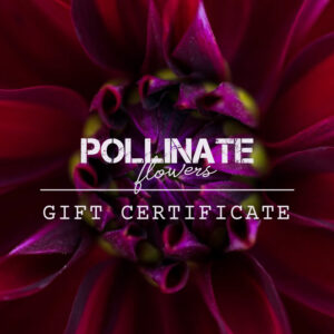 Pollinate Flowers Gift Certificate
