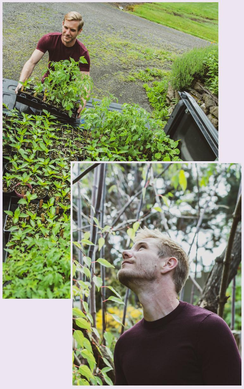 John Peterson, Farmer • Pollinate Flowers